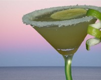 010 Top Shelf Margarita copy